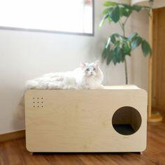 Arenero para gatos en mueble. Casa de mascotas #pets #cats #arenero de diseño en madera #diy. Todas las ideas para convivir con nuestras mascotas en 10deco.com