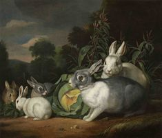 Jacob Samuel Beck (1715-1778) - A rabbit family.  Things of beauty I like to see