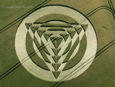 Crop Circle Images 2014 - Photography by Steve Alexander