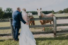 The Pavilion at Carriage Farm has horses that make the perfect addition to your wedding pictures. Located in Raleigh, NC.