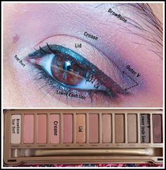 Urban Decay Naked 3 Makeup Looks And Tutorials