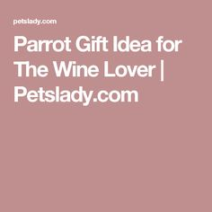 Parrot Gift Idea for The Wine Lover   Petslady.com