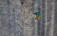 The North Face Climber Hansjorg Auer on the Marmolada