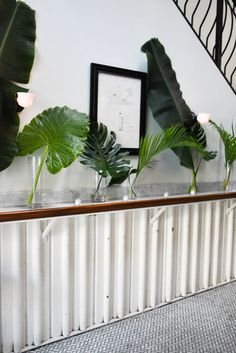 Mix of tropical foliage leaves for ceremony backdrop, featuring elephant leaves, monstera, Extra tall tropical centerpiece with alocasia elephant ear leaves for Ramona wedding in Greenpoint Brooklyn. Tall green wedding centerpiece. Unique tall centerpiece. Modern tall centerpiece. Stylish centerpiece at loft style wedding venue.