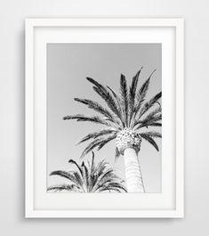 Black and White Palm Tree Photography, Hawaii Palm Trees, California Wall Prints, Black and White Digital Prints, Monochrome Artwork