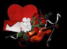 182 Best Violins Roses Images
