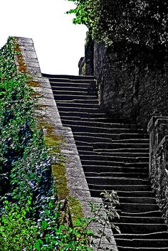 ˚Old stairs - Clisson, France