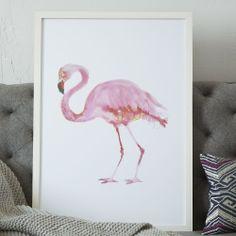 Framed Bird Wall Art, Flamingo