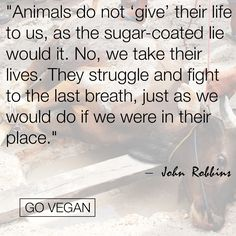 Look at it from their point of view #GoVegan #vegan
