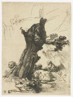 Hieronymus bij de knotwilg, Rembrandt Harmensz. van Rijn, 1648