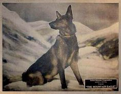 Lobby card for the 1926 silent film The Mountain Eagle.  This is the only lost feature film of Alfred Hitchcock.