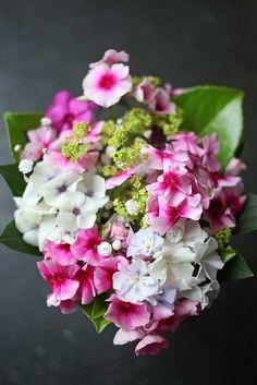 https://flic.kr/p/HW2mL7 | Blumenstrauß von oben