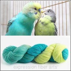 Expression Fiber Arts - PARROT FEATHERS 'RESILIENT' SUPERWASH MERINO SOCK, $24.00 (http://www.expressionfiberarts.com/products/parrot-feathers-resilient-superwash-merino-sock.html)