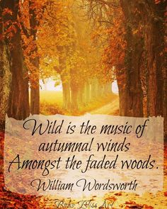 Wild is the music of Autumnal winds, Amongst the faded woods. Sassy Quotes, Life Quotes Love, Great Quotes, Fall Quotes, Autumn Quotes Cozy, Autumn Quotes Inspirational, Winter Quotes, Life Sayings, William Wordsworth Quotes