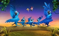 Rio_2_11 Parrot Wallpaper, Cartoon Wallpaper, Disney Wallpaper, Dreamworks Movies, Dreamworks Animation, Animation Film, Movie Wallpapers, Cute Wallpapers, Disney Art