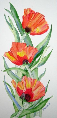 Watercolor, 3 Poppies by T Ryder Watercolour Tutorials, Watercolor Artists, Watercolor Flowers, Watercolor Paintings, Love Painting, Silk Painting, Plant Art, Whimsical Art, Funny Art