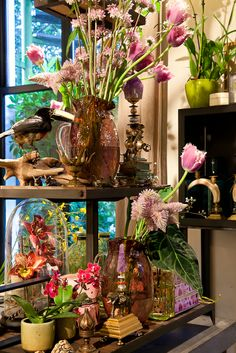The Wunderkammer Shop for a Week - Tropical Dreams. vanWOUW PHOTO. www.thewunderkammer.eu