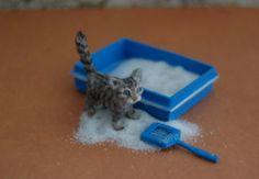 OOAK Realistic Handmade ~ Kitten ~ Miniature Dollhouse 1:12 Sculpture by Reve