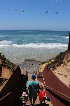 Carlsbad Tide Pools Trip local Southern California | San Diego | Travel | Sponsored Post