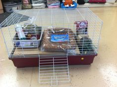 """Guinea Pig Evacuation Kit from Wee Companions Small Animal Adoption. Contains: 1 Super Pet folding top cage (30"""" x 18"""" x 16.5""""), 1 bag TEK Fresh bedding, 1 Quiet Time pet bed, 1 Oxbow Harvest Stacks of Timothy hay(6 compressed portions=35 oz total), 1 Petmate litter pan (14.1"""" x10.4"""" x3.5""""), 5 lbs. Oxbow adult guinea pig pellets, Oxbow Simple Rewards Papaya Medley treat, plus 16 oz water bottle & holder, food bowl & hay rack. Good example of what to include in an emergency kit. Animal Adoption, Pet Adoption, Skinny Pig, Guniea Pig, Litter Pan, 72 Hour Kits, Guinea Pig Care, Food Bowl, Pet Mat"""