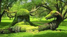 chi si nasconde sotto il verde?
