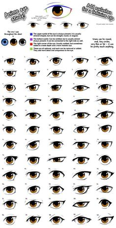anime eye drawing reference, male/femaleYou can find Anime eyes and more on our website.