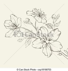 Vector - Calligraphy cherry blossom. - stock illustration, royalty free illustrations, stock clip art icon, stock clipart icons, logo, line art, EPS picture, pictures, graphic, graphics, drawing, drawings, vector image, artwork, EPS vector art