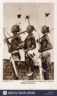 Three Shilluk Warriors of the Upper Nile, Sudan, Africa - bearing traditional weapons and displaying feather-topped topknots (one bearing the full head of what appears to be a crane)