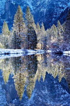 Winter in Yosemite National Park next to the Merced River