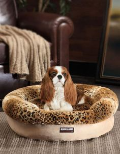 this kirkland signature pet bed features a foam-filled base that