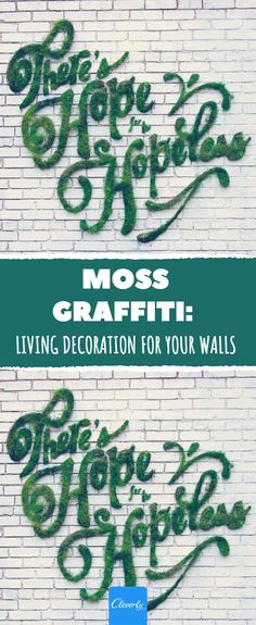 Moss Graffiti: Living Decoration For Your Walls Gardening For Dummies, Hand Tied Bouquet, Sophisticated Wedding, Garden Deco, Seasonal Flowers, Flower Quotes, Feelings And Emotions, Shade Garden, Graffiti Art