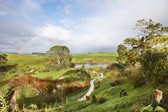 Step into the Shire at the Hobbiton set - an easy day trip from Auckland.