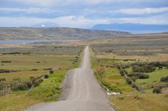 Road Y-50 towards Estancia Rio Verde, Magallanes, Chile