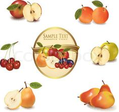 Gold label with different sorts of fruit. Vector.