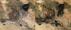 Iraq's marshes recover after Saddam Hussein