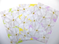 Sorbet Cards - Set of three by NaturesAtelier on Etsy