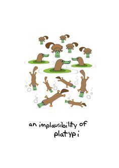 An Implausibility of platypi