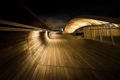 Henderson Waves Pedestrian Bridge in Singapore
