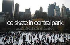 Cosas que quiero hacer:Patinar sobre hielo en Central park