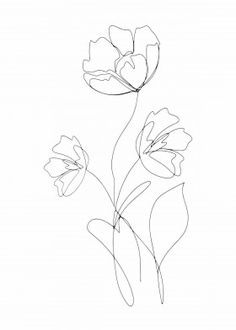 """Beautiful """"Poppies Minimal Line Art """" metal poster created by Maria Heyens. Our Displate metal prints will make your walls awesome. Line Art Flowers, Flower Line Drawings, Flower Art, Art Drawings, Drawing Flowers, Poppy Drawing, Floral Drawing, Simple Flower Drawing, Outline Art"""