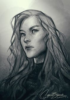 Aelin by Charlie Bowater (SO obsessed with this!!)