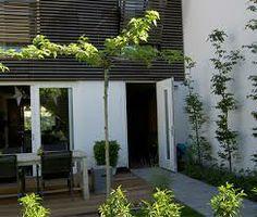 gezellige moderne tuin - Google zoeken