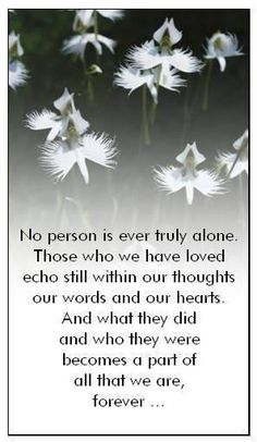 Words to Comfort those in need - In Memory & Sympathy Miss You Mom, Love You, My Love, The Words, Love Of My Life, In This World, My Champion, Grief Loss, After Life