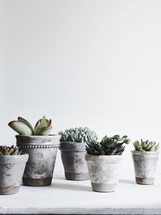From herb gardens to groupings of succulents, if youre gathering together a display of plants in your home, youll need to think as much House Plants Decor, Plant Decor, Hanging Plants, Potted Plants, Neptune Home, Air Cleaning Plants, Terracotta Plant Pots, Herb Farm, Low Light Plants