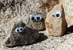 Rock Friends to make while camping... we always paint rocks, but Ive never thought of bringing along googly eyes and glue too. franchescag