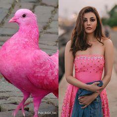Kajal Agarwal Saree, Girl Number For Friendship, Neha Sharma, Fangirl, Strapless Dress, Pigeon, Instagram, Dresses, Fashion