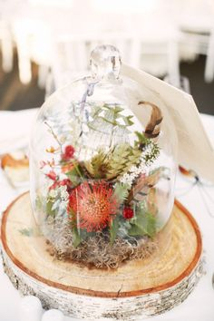 terrariums + protea and feathers  Photography by alexandrameseke.com, Floral Design by rebeccashepherdfloraldesign.com