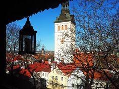 View-of-Tallinn-Estonia-from-Café-Dannebrog-Adoration-4-Adventure