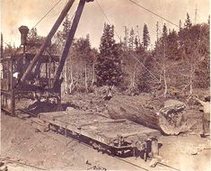 McGiffert Loader  was taken near Hobart Mills, California, north of Truckee. The narrow gauge railroad shown was operated at that time by the Sierra Nevada Wood and Lumber Company. The SNW&LCo operated out of Hobart Mills from the late 1890's until about 1936.