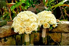 White Roses From Byron Bay Wedding Flowers